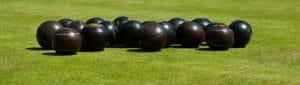 Bowls Insurance Image