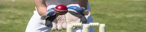 Cricket Insurance img