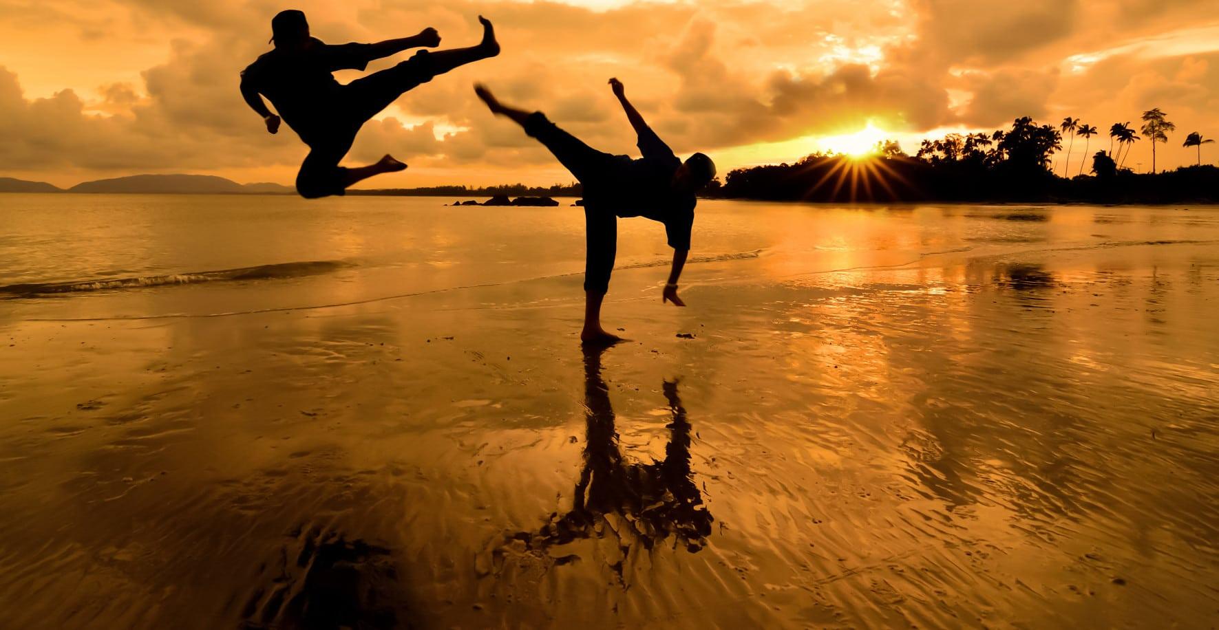 Martial Arts insurance img