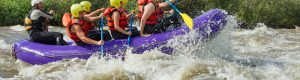 White water rafting insurance img