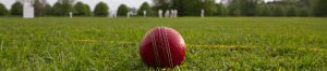 cricket-club-insurance