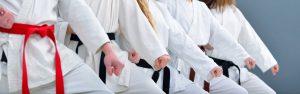 karate insurance img