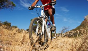 downhill mountain biking insurance img