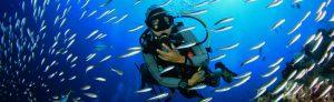 scuba diving insurance img