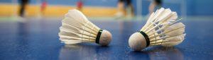 badminton insurance img