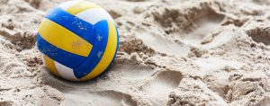 Volleyball Insurance Image