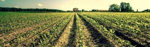farm work insurance