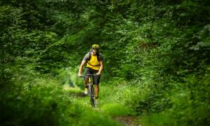 mountain biking cover
