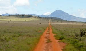 Kenya Wildlife Marathon track