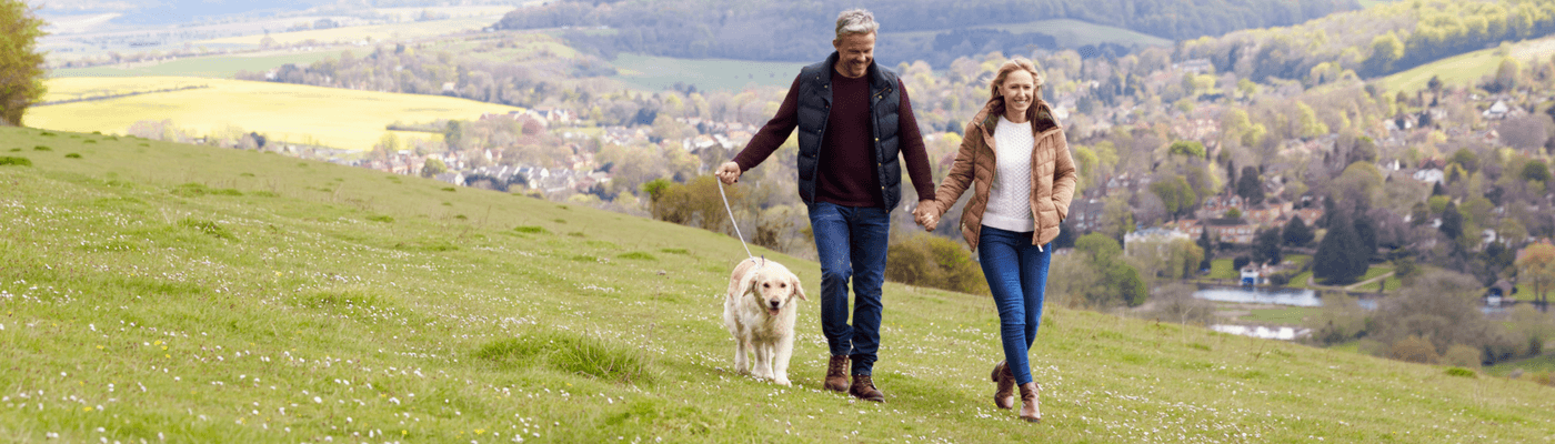 dog walking insurance cost